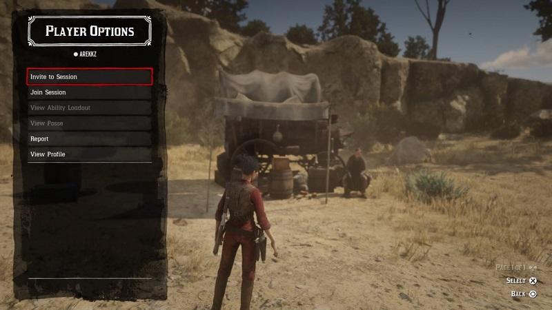 Image result for red dead redemption online