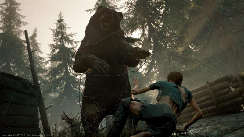 days gone defeat bears