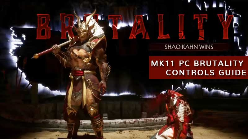 Mortal Kombat 11 All Brutalities PC Controls