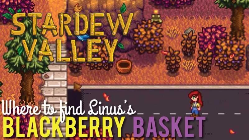 stardew valley linus lost blackberry basket