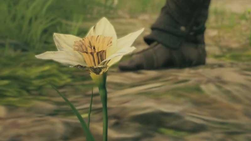 Asphodel Flower Location AC Odyssey