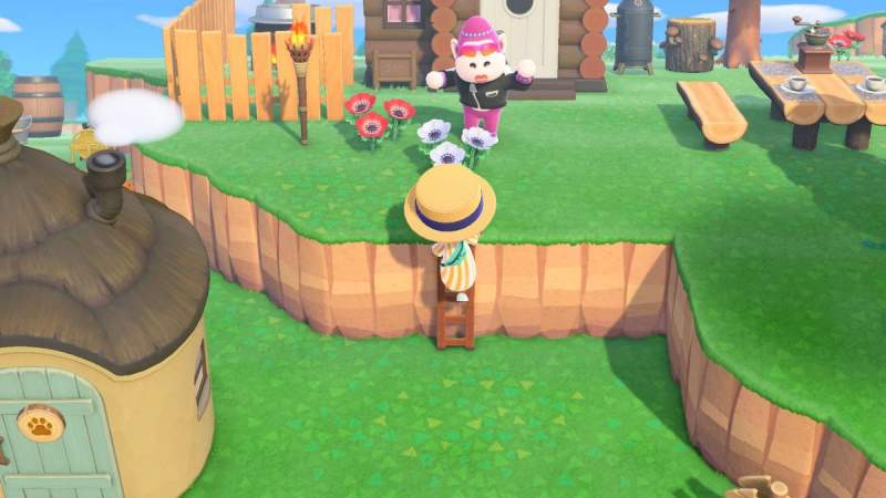 How To Quickly Get The Ladder in animal crossing new horizon