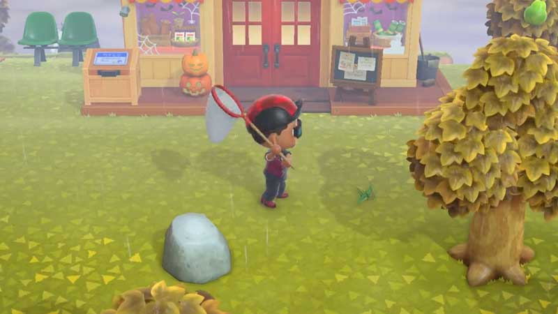How to catch Mole Cricket In Animal Crossing