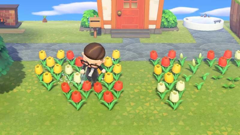 Farm Hybrid Flowers in Animal Crossing