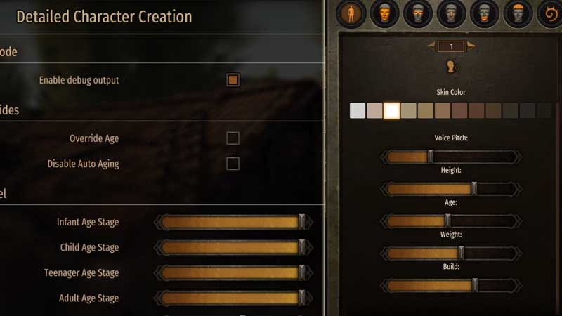 Detailed Character Creation Bannerlord Mod