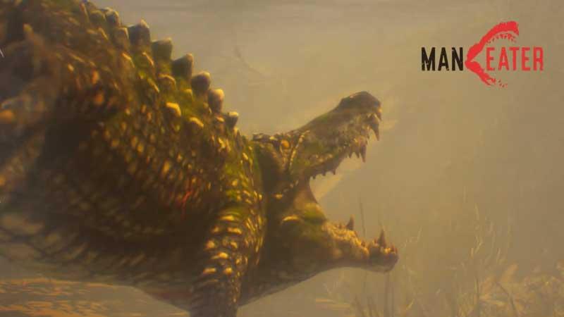 all-apex-predators-in-maneater