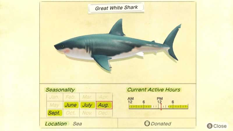 how-to-catch-great-white-shark-acnh