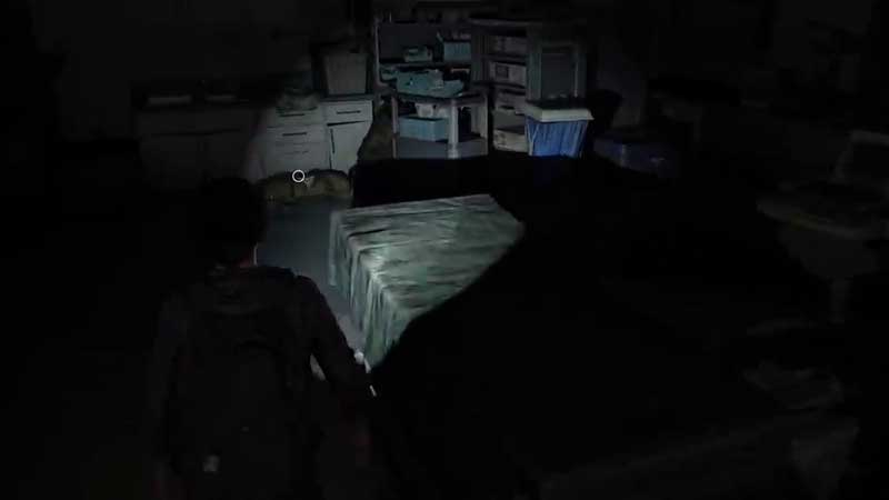 Last of Us Part 2 Hospital Bag