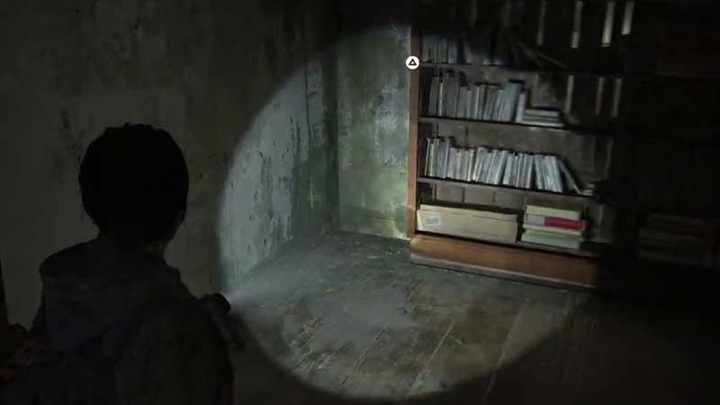 TLOU2 Hidden Room