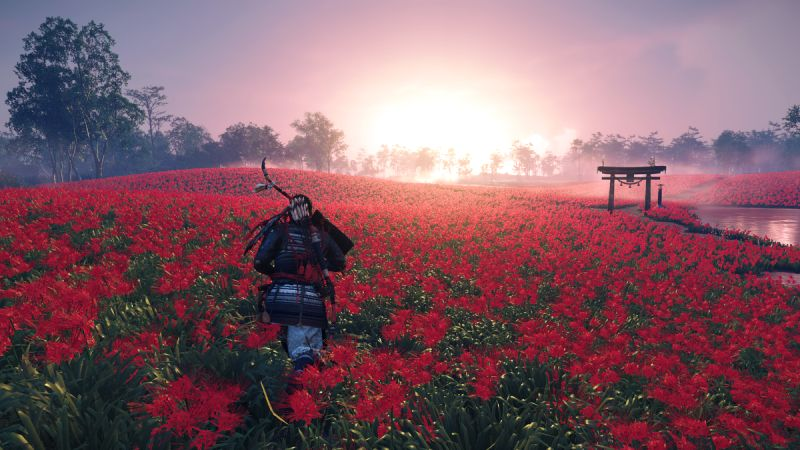 Ghost of Tsushima on PS4 Pro Runs At Only 30FPS
