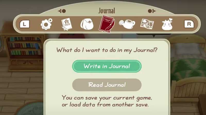 Story-Of-Seasons-Friends-Of-Mineral-Town-journal