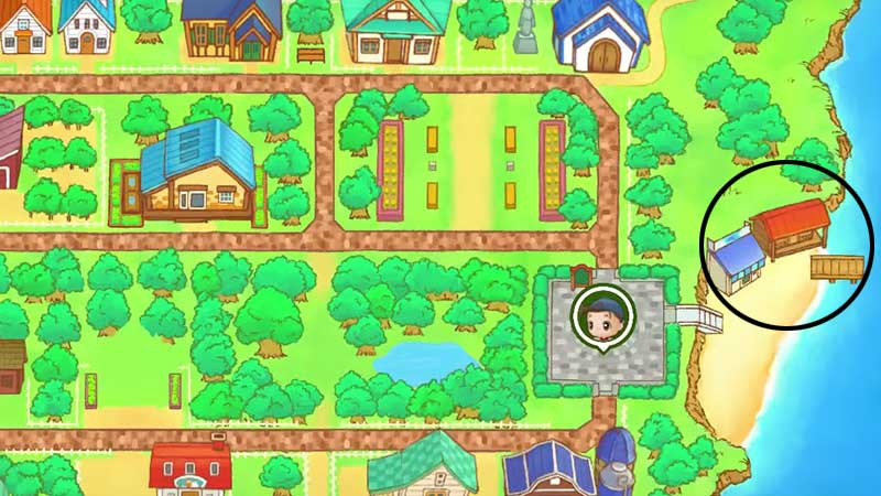fishing-rod-in-friends-of-mineral-town