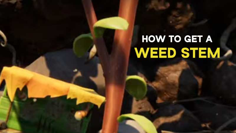 grounded-how-to-get-weed-stem