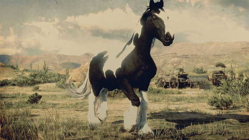 gypsy-cob-red-dead-online-new-horse