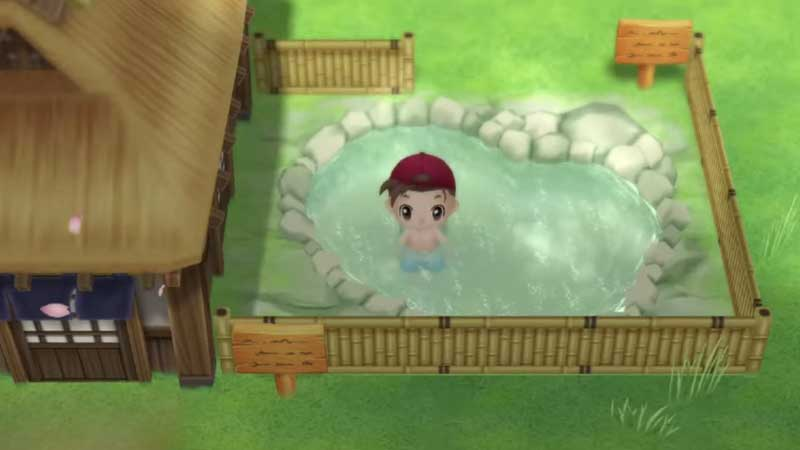 how-to-increase-stamina-in-story-of-seasons-friends-of-mineral-town