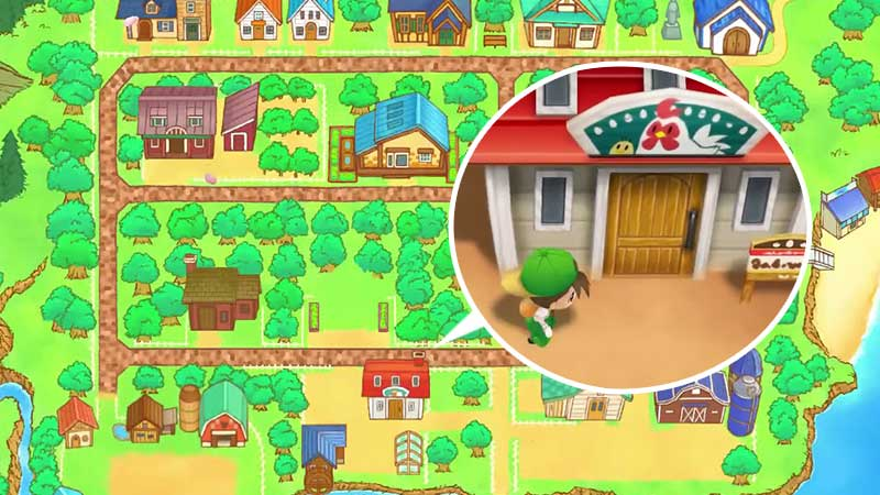 how-to-raise-chickens-in-story-of-seasons-friends-of-mineral-town
