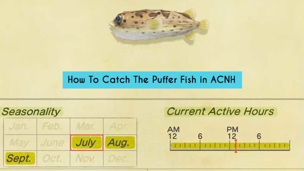 Puffer Fish In Acnh How To Catch It Gamer Tweak