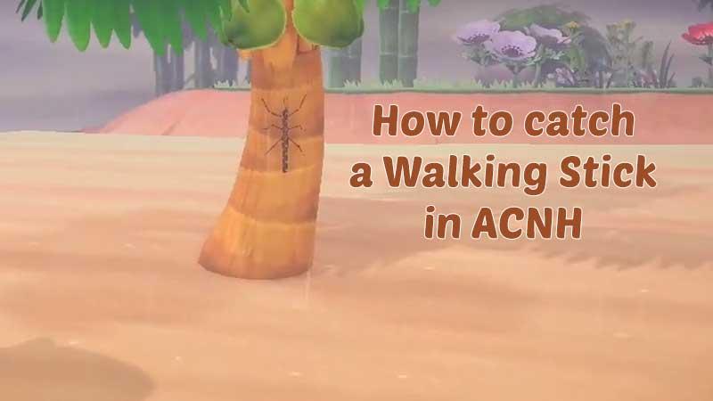 walking-stick-in-acnh