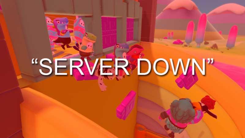 Fall Guys Server Down