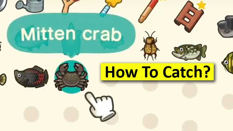 how-to-catch-mitten-crab-in-acnh