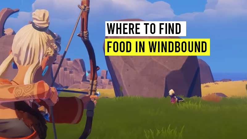 where-to-find-food-in-windbound