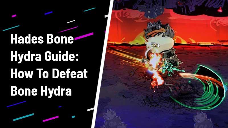 Hades Bone Hydra Guide: How To Defeat Bone Hydra
