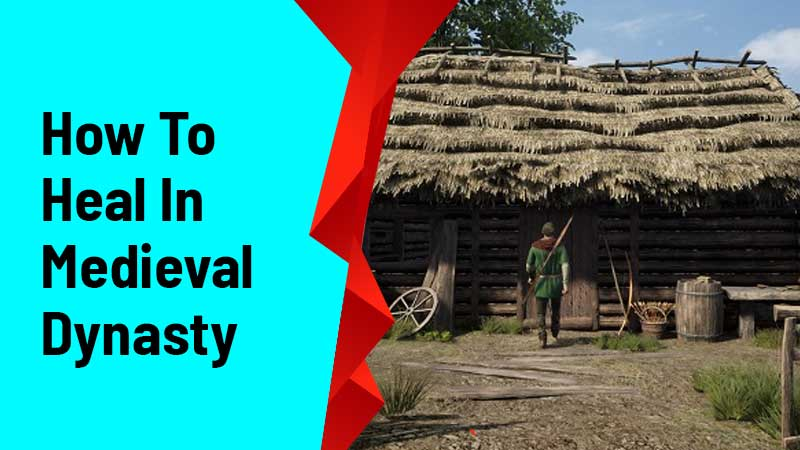 How To Heal In Medieval Dynasty
