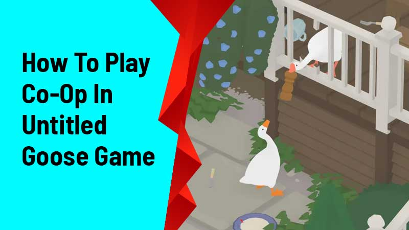 How To Play Co-Op In Untitled Goose Game