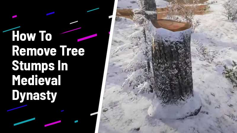 How To Remove Tree Stumps In Medieval Dynasty