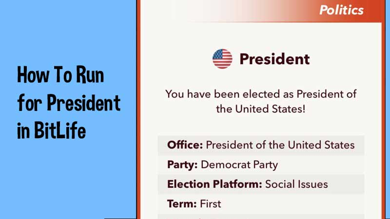 How-To-Run-For-President-In-Bitlife