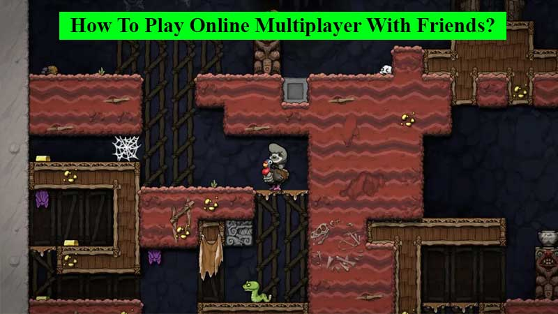 How to play online multiplayer with friends in Spelunky 2