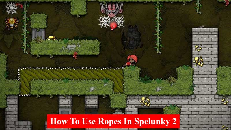 How to use ropes in Spelunky 2