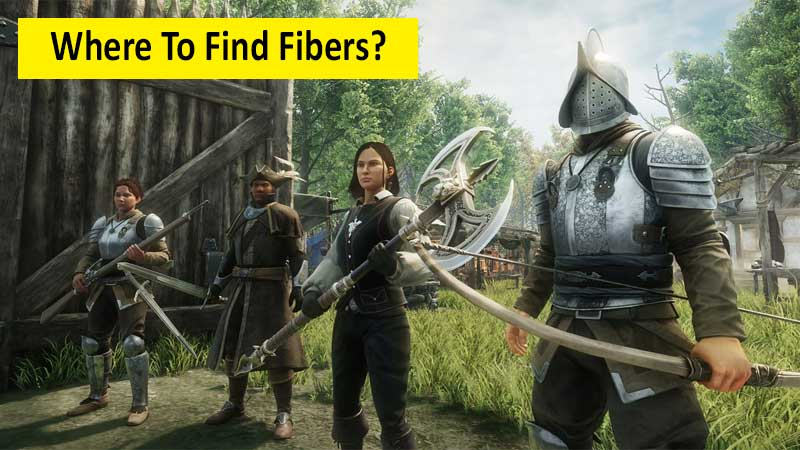 Where To Find Fibers In New World
