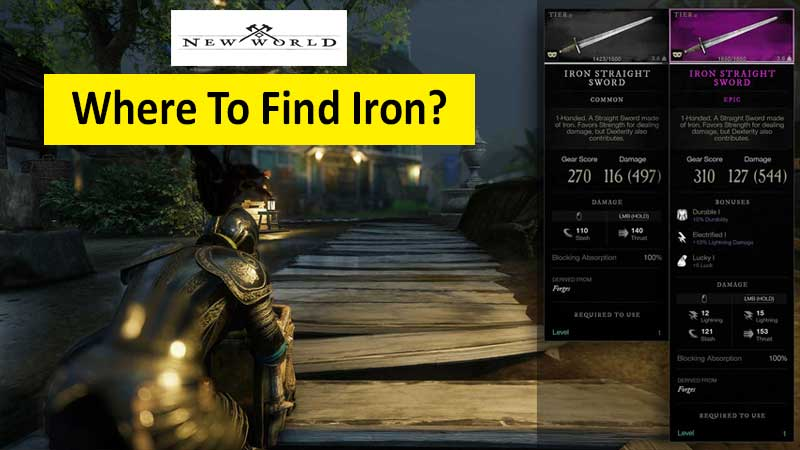 Where to find iron in New World