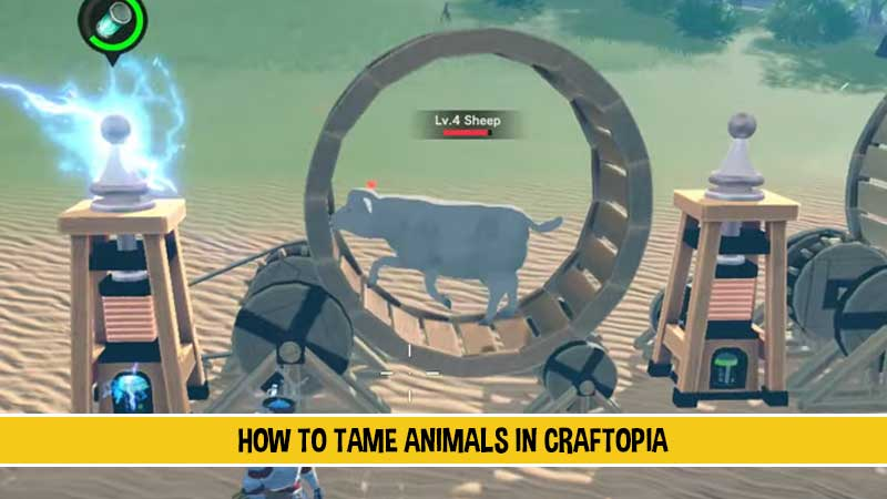 how-to-catch-tame-animals-craftopia