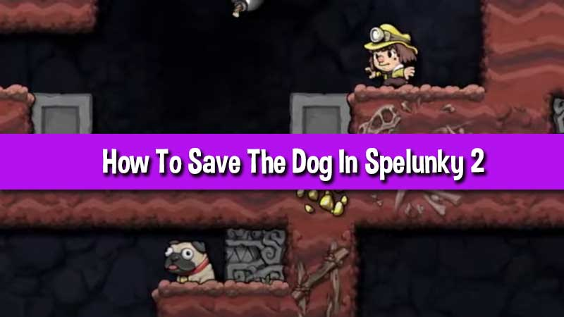 how-to-save-the-dog-in-spelunky-2