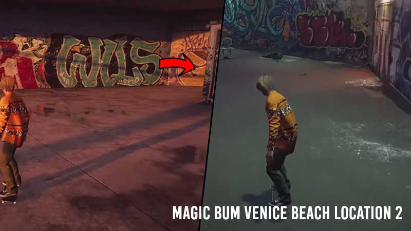 ollie-magic-bum-5x-venice-beach-location