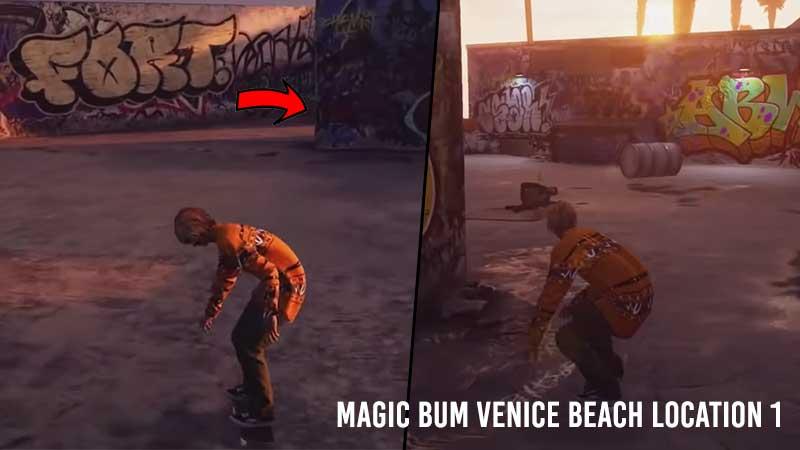 ollie-magic-bum-venice-beach-location