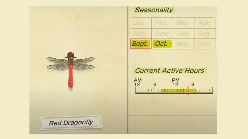 red-dragonfly-acnh