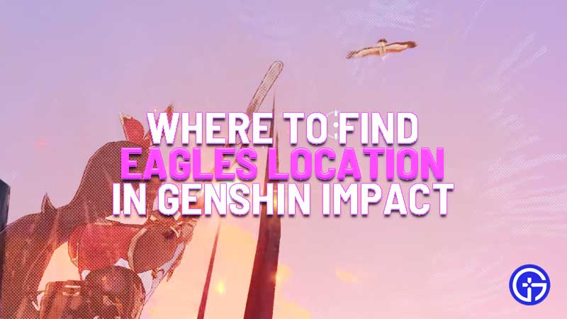 where to find eagles location in genshin impact