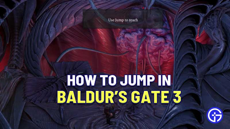 baldur's-gate-jump-action-how-to-perform