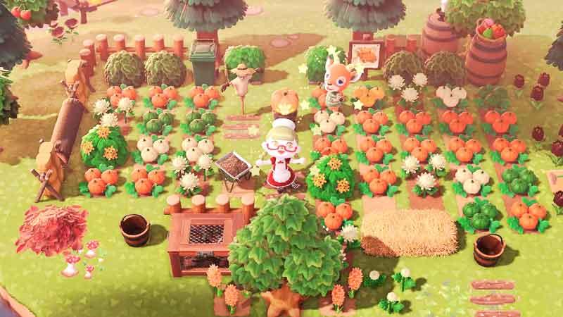 change pumpkin color in acnh