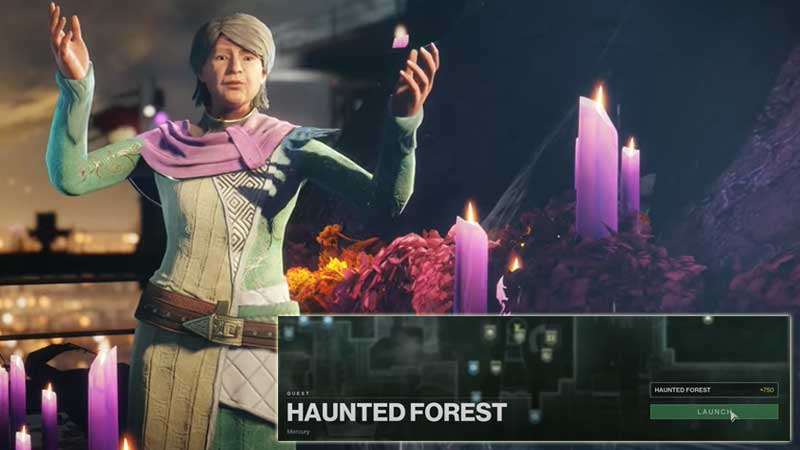 How to find Haunted forest Destiny 2