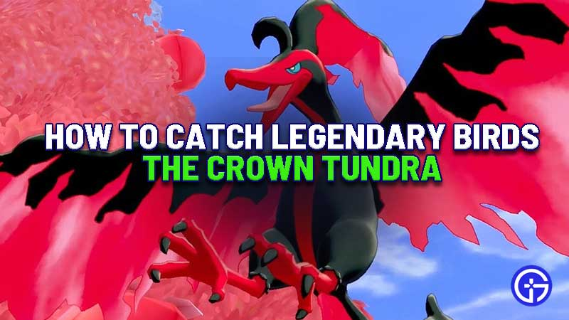 how-to-catch-legendary-birds-crown-tundra-zapdos-moltres-articuno