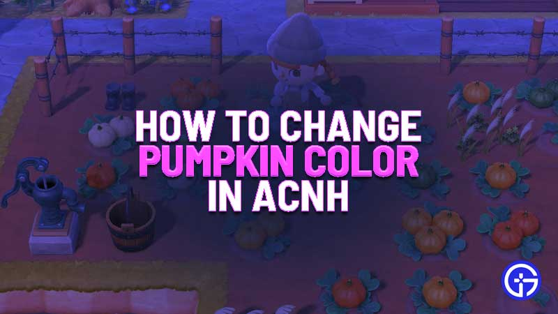 how to change pumpkin color in animal crossing new horizons
