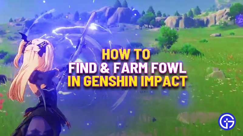 how-to-find-fowl-genshin-impact
