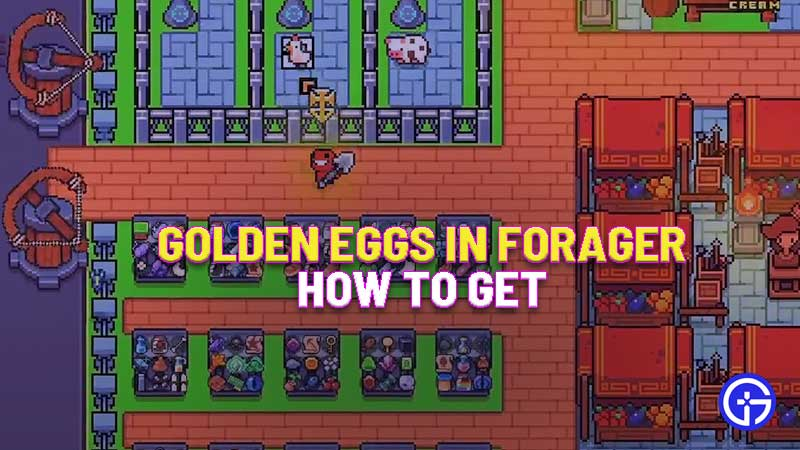how-to-get-golden-eggs-in-forager