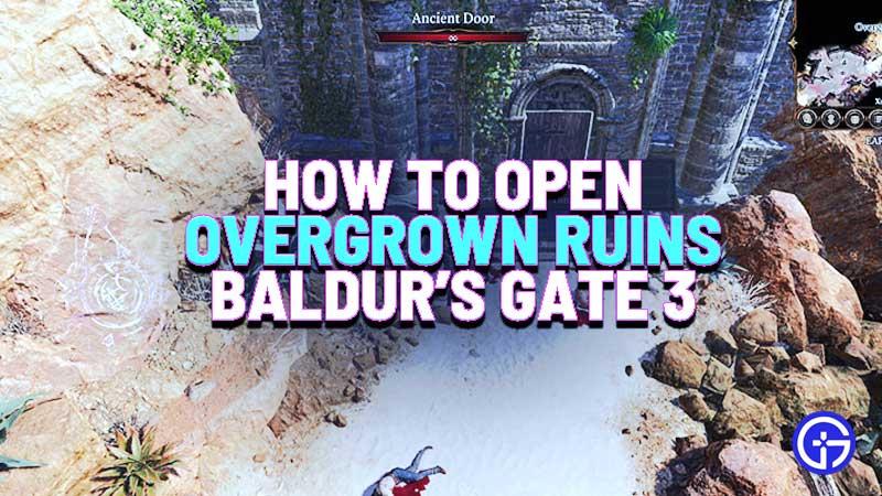 how-to-open-overgrown-ruins-baldurs-gate-3