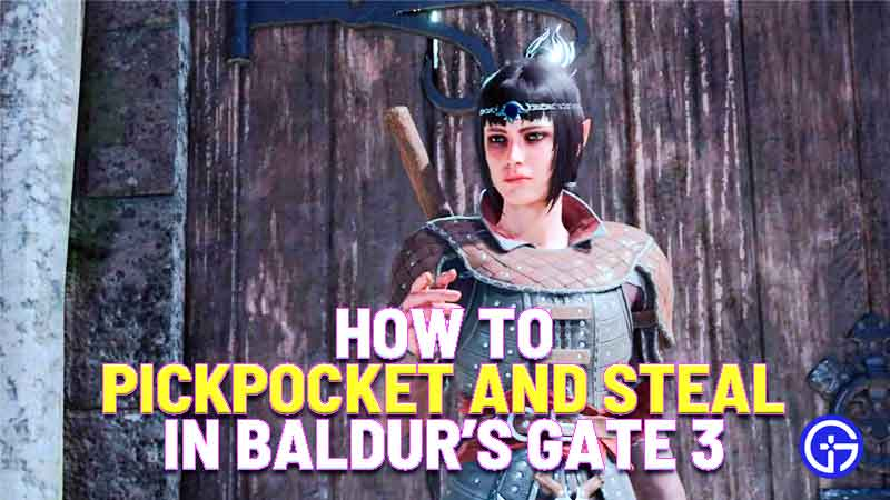 how to pickpocket and steal in baldur's gate 3