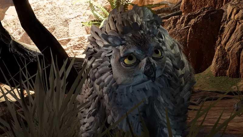 how to tame owlbear cub in baldur's gate 3